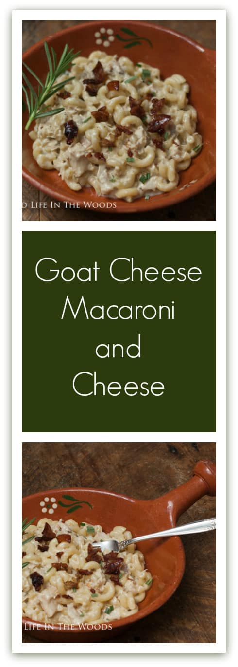 Goat Cheese Macaroni & Cheese is the best, most delicious macaroni and cheese I have ever had. Its flavor is enhanced by roasted chicken, rosemary, roasted garlic, and chicken skin basic.