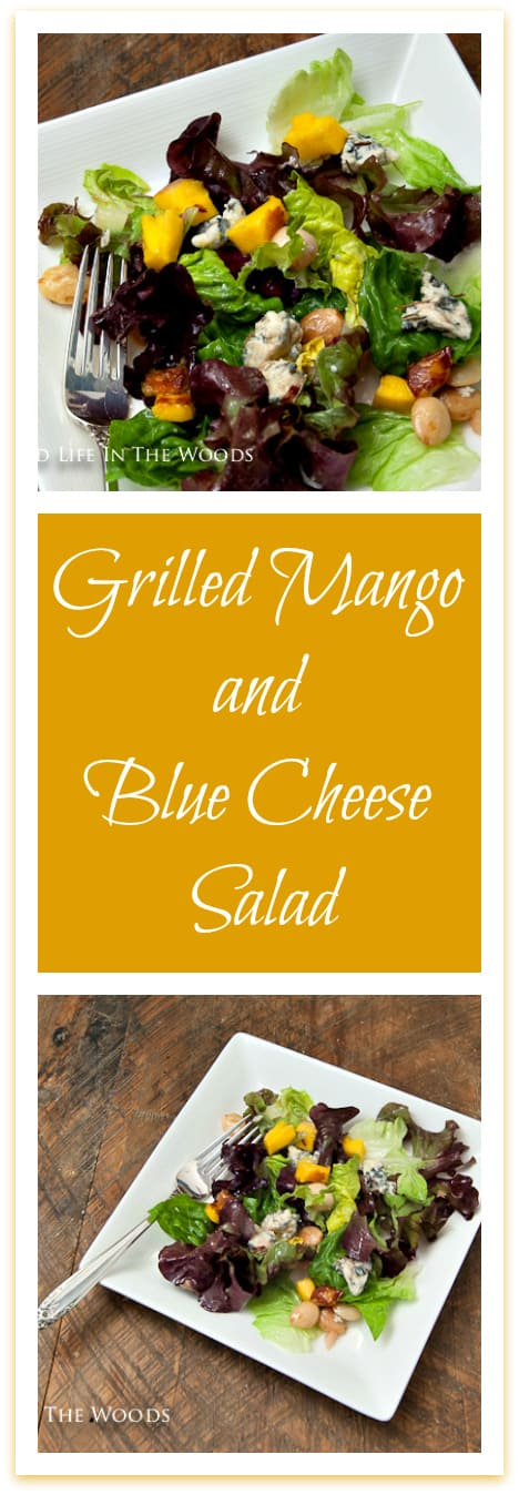 Grilled Mango and Blue Cheese Salad is the perfect salad to set off any protein you might happen to be grilling: beef, pork, chicken, or venison would pair beautifully with this perfectly balanced salad.