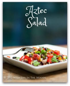 Aztec Salad: Repentance Never Tasted So Good