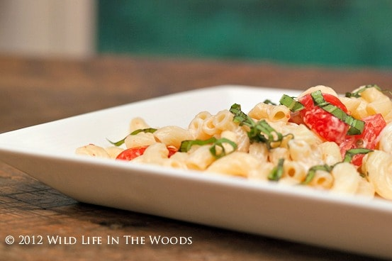 Pioneer Woman's Spicy Pasta Salad with Smoked Gouda ...