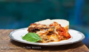 Extravagantly Excellent Eggplant Parmesan is one of the best dishes I've ever made! #eggplantparm #eggplant #eggplantparmesan #fried