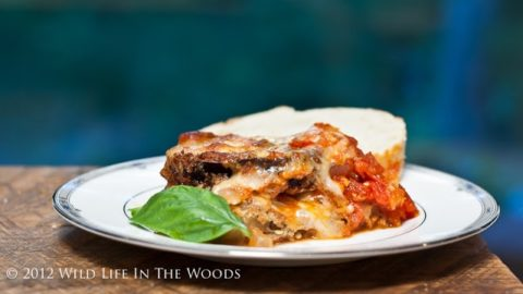 Extravagantly Excellent Eggplant Parmigiana