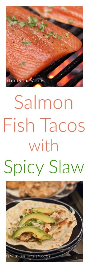 Quick, Easy Grilled Fish Tacos with Spicy Slaw - That Susan Williams