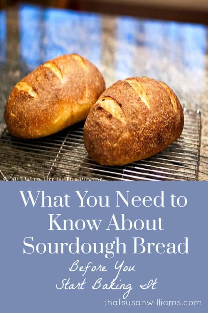 Sourdough Bread: the Deflating Truth