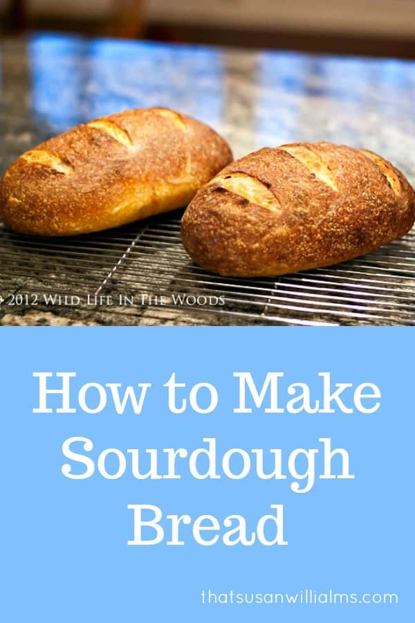 How to Make Homemade Sourdough Bread #recipe #sourdough #starter #homemade