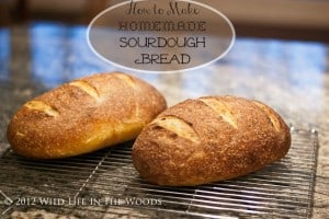 How to Make Sourdough Bread: The Deflating Truth