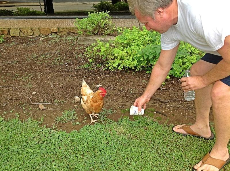 Greg feeding Henry.