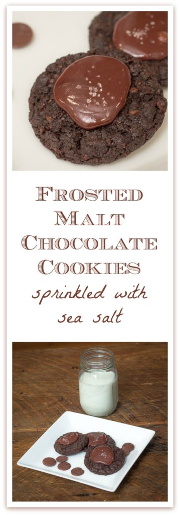 #chocolate #cookies #ganache Frosted Malt Chocolate Cookies are the perfect dessert for any chocolate lover, whether it's Christmas, Valentine's Day, or a birthday dessert.