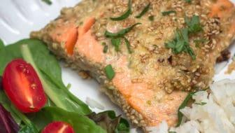 Sesame Crusted Alaska Salmon