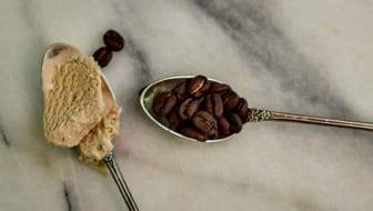 Black Coffee Ice Cream and Bosch Ice Cream Maker Review