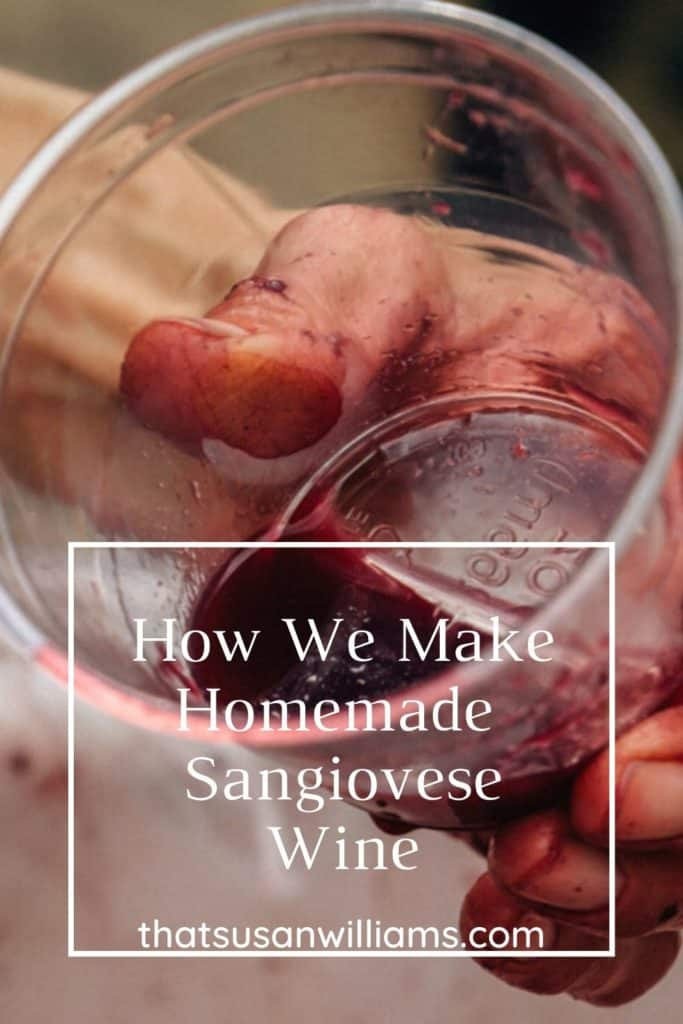 How We Make Homemade Sangiovese Wine Cup