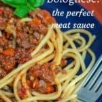 The Perfect Meat Sauce: Venison Bolognese
